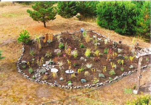 the garden from above in late summer