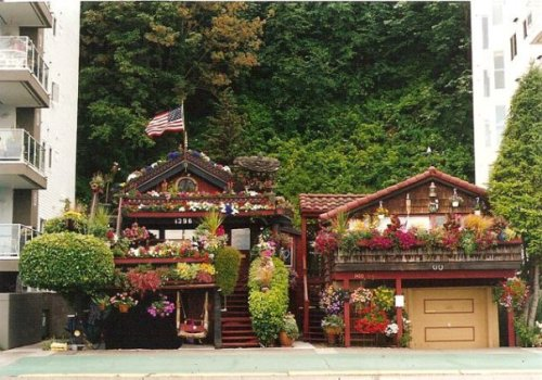 the most astounding container display