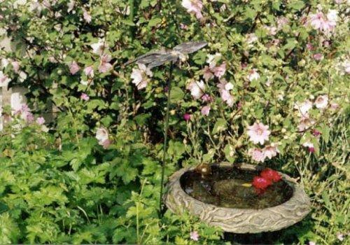 birdbath with 'Barnsley'