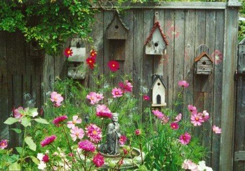 Jo's birdhouse fence