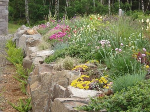 Discovery Heights middle garden in spring