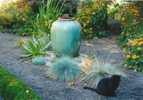 in Dulcy's garden