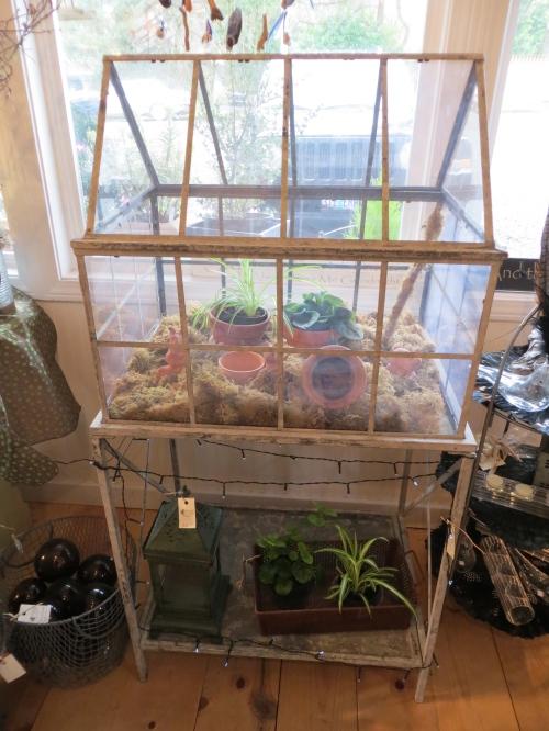 mini glasshouse