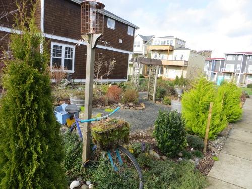 the garden between townhouses