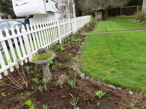 picket fence garden