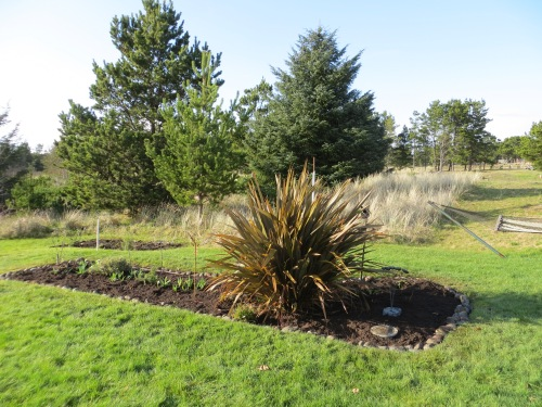 a parting look at a nicely mulched bed!