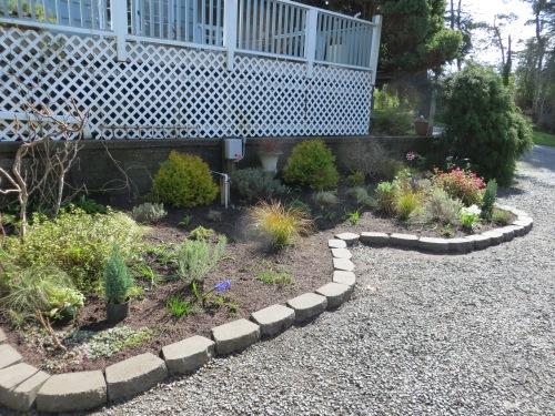 driveway garden redesign
