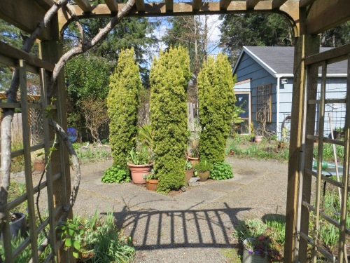 looking in to the fenced garden