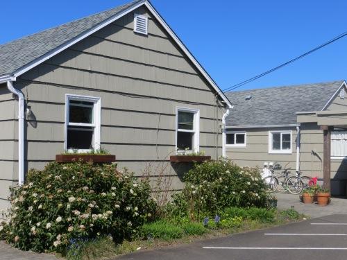 Viburnum at Anchorage Cottages