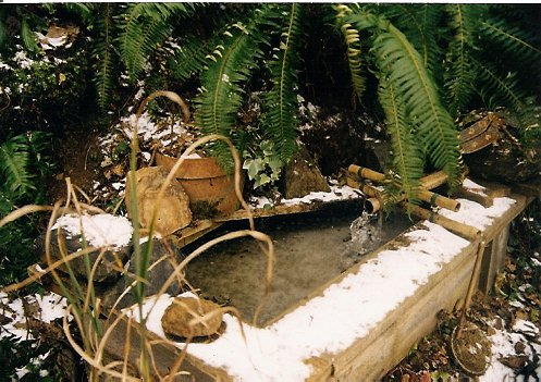 January 1999, snow on a water feature Robert had built by our upper patio
