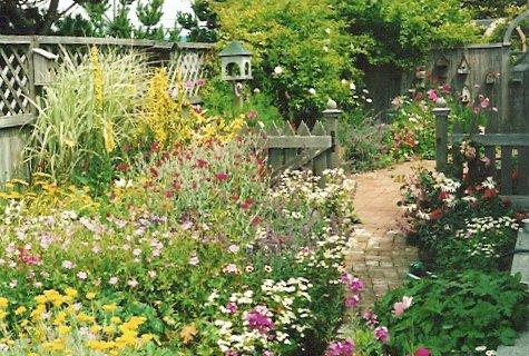 Jo's garden