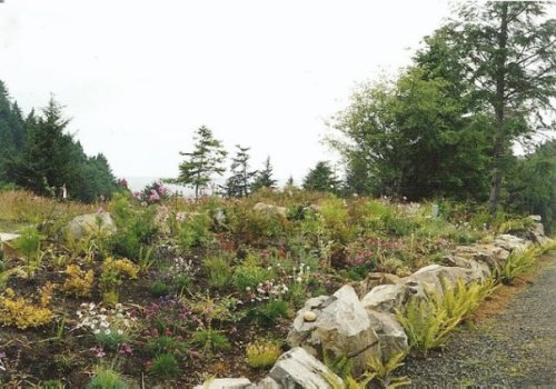 Discovery Heights middle garden