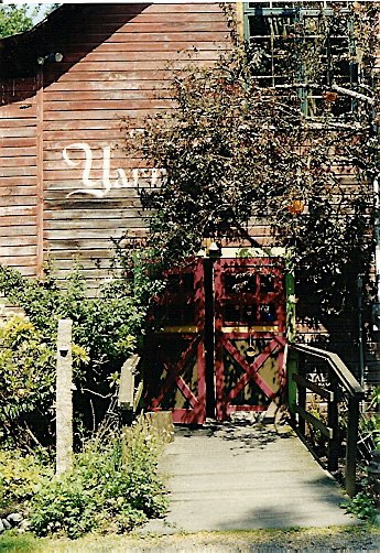 at Molly Ward gardens