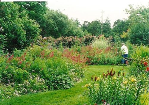 mom working in her garden, summer 2004