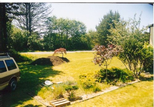 looking south from the house, with a pile of soil