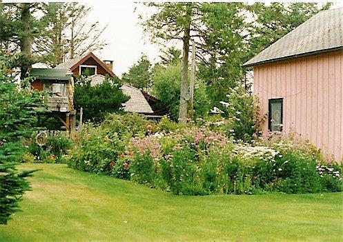 Mulvey garden, 2000