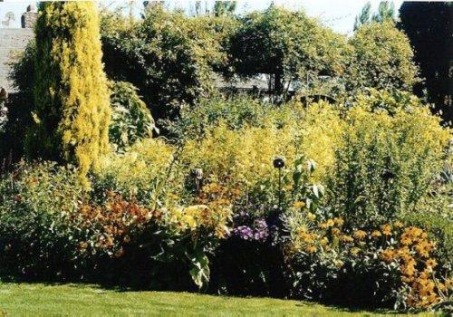 in the 4 quadrants garden