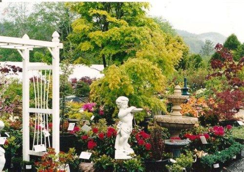 Raintree Nursery in 2001