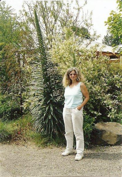 Sheila by an Echium at Cistus