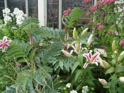 summer garden at the Shelburne Inn