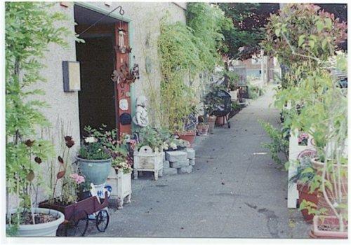 his sidewalk garden