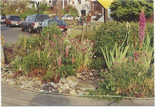 street circle garden