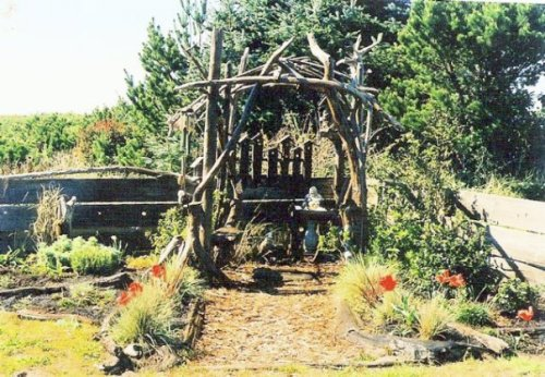 the driftwood temple at Seanest
