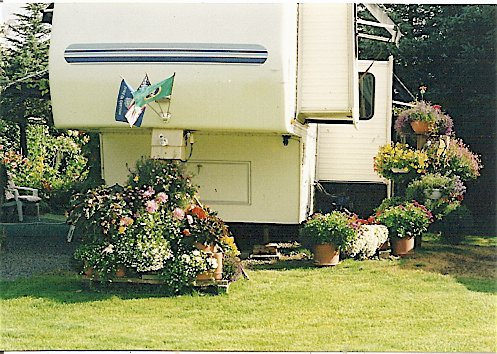 Nick and Vernice's garden