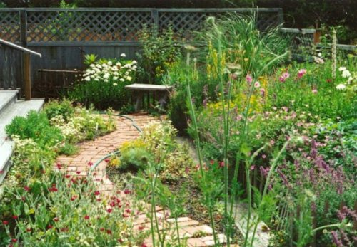 west side of the garden with new path