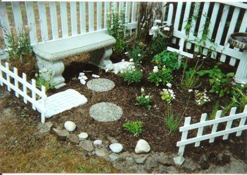 Whitey's garden