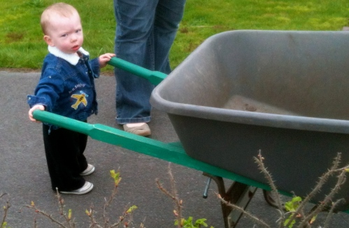 wheelbarrow boy