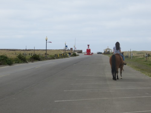 horse and rider on the approach