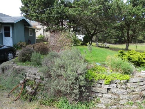 Seanest entry garden