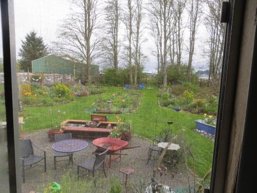 back garden window view