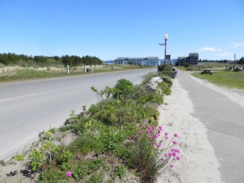 beach approach garden, looking east from the end