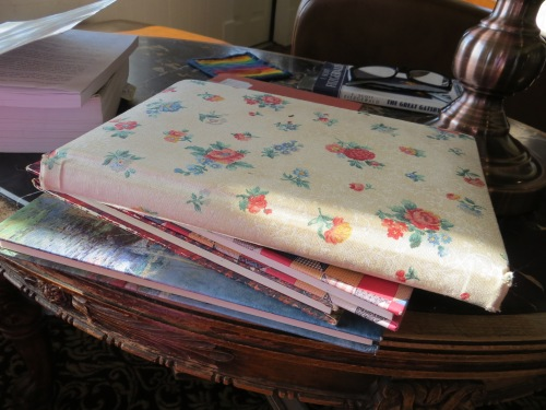 journals from Emily