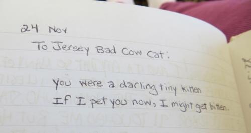 Jersey poem