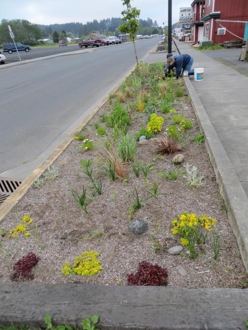 planting at Queen La De Da's