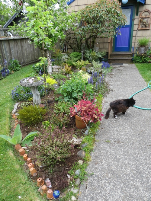 Allan's garden with Maddy