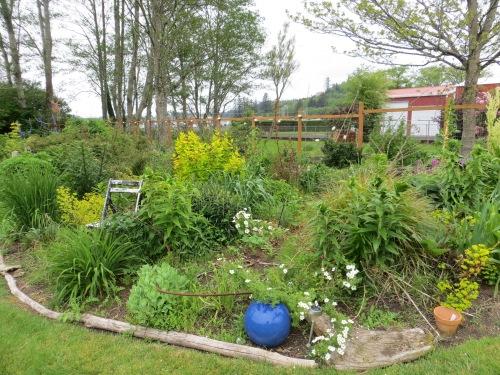 west garden, before
