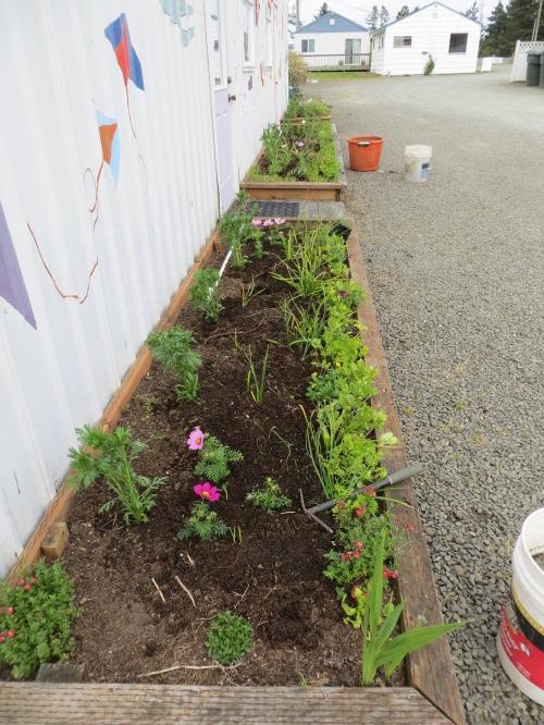 three Payson Hall planters
