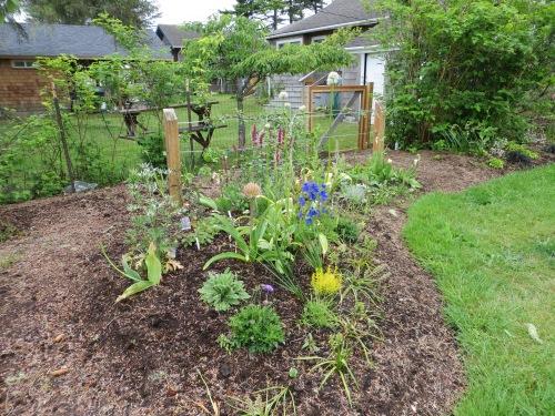 flower garden coming on