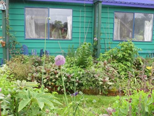 2:38 PM, front garden