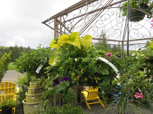 gazebo and baskets