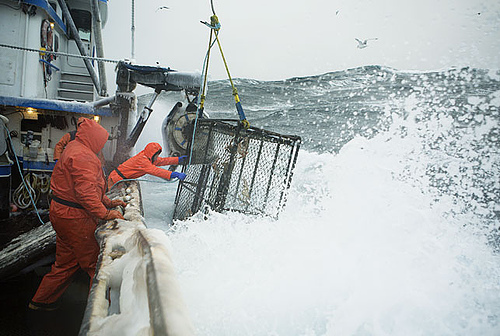 "I often think in bad weather, ""Could be worse, could be crabbing on the Bering Sea!"""