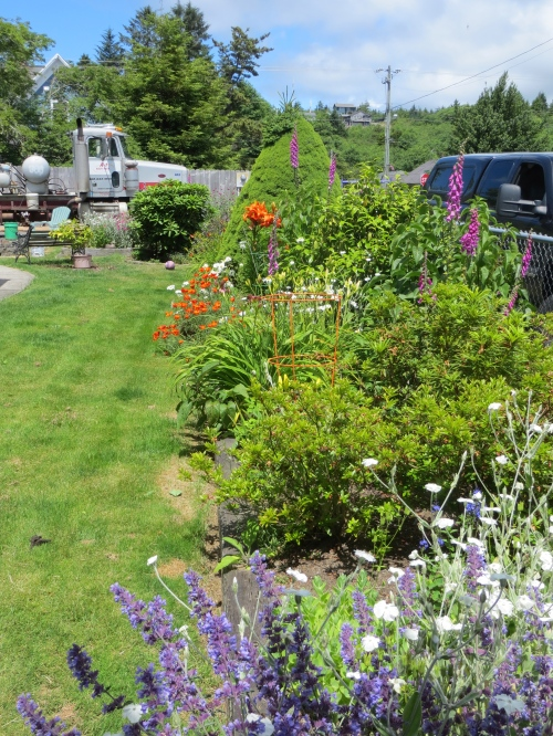 side garden with cement truck backdrop