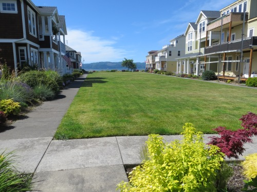lawn between townhouses