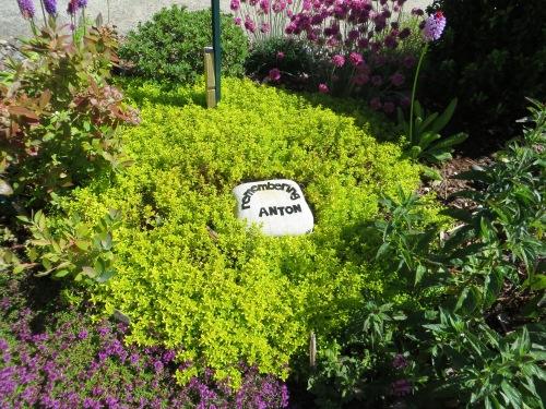Anton memorial