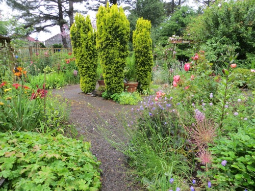 fenced garden