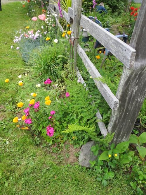 classic cottage garden